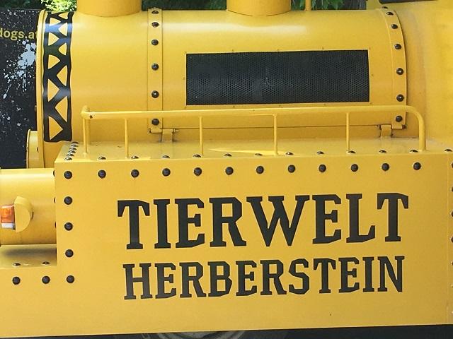 Herberstein v sliki