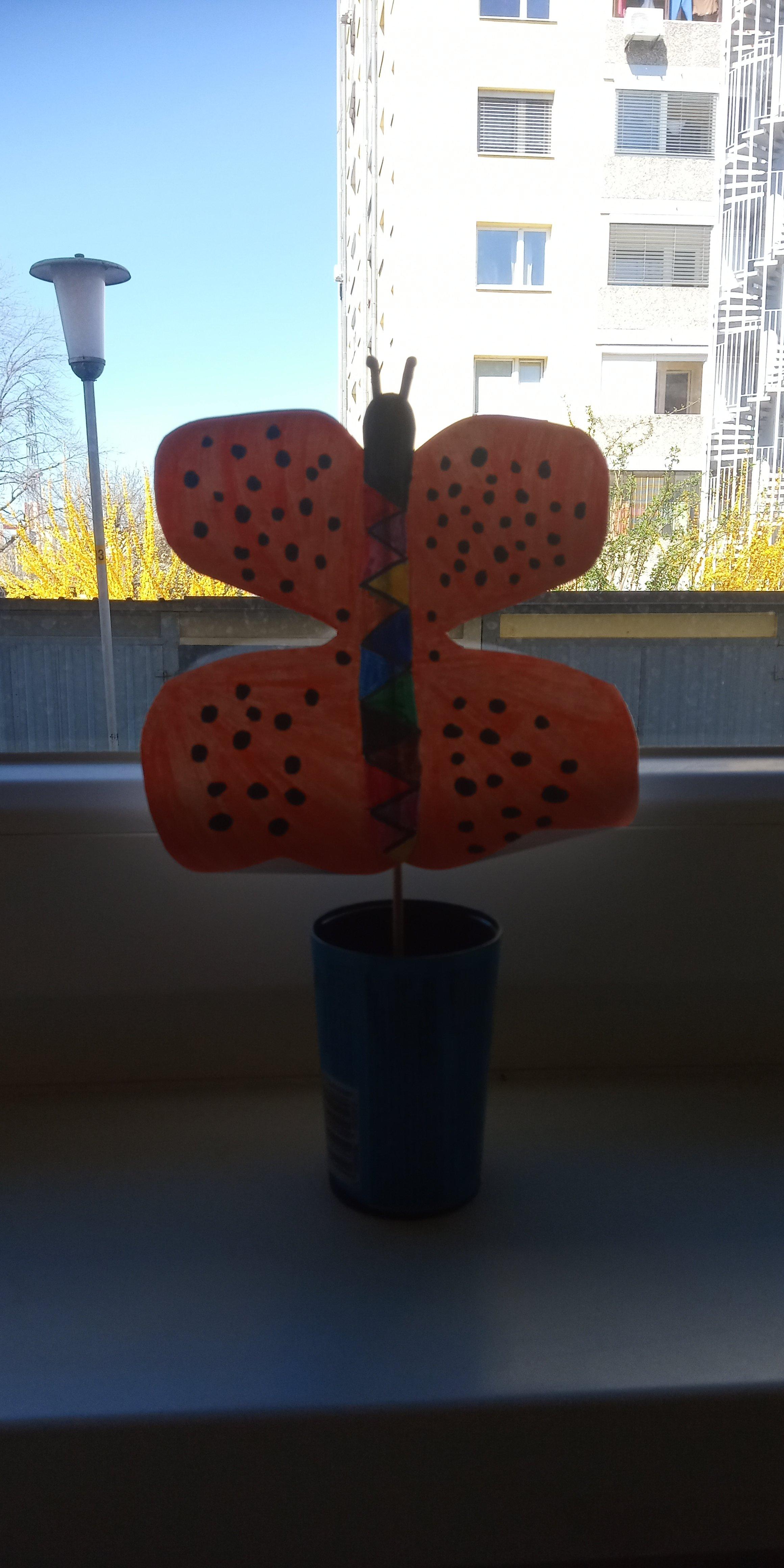 metulj_0